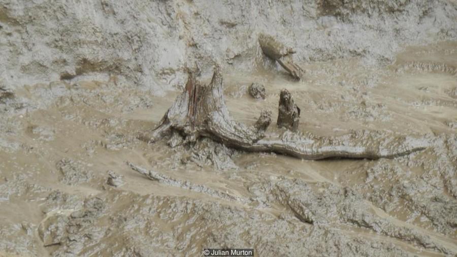 cratère trou sol fonte glace réchauffement sibérie foret sédiments arbres