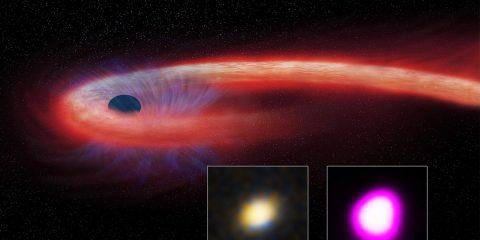 evenement des perturbations des marées trou noir étoile mourrante festion supermassif