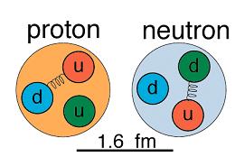 disposition quarks proton neutron