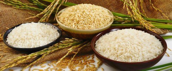 riz technique de cuisson féculents amidon calories