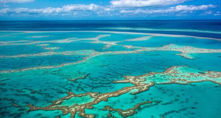 virus bactérie bactériophage ocean eau