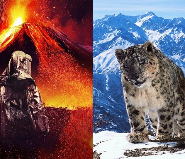 into the inferno volcan nature léopard des neiges nature planet earth documentaires