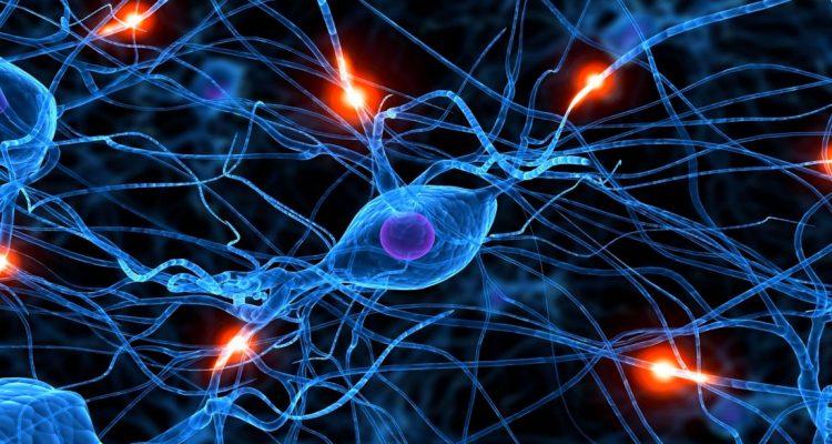 Vue d'artiste d'un réseau de neurones