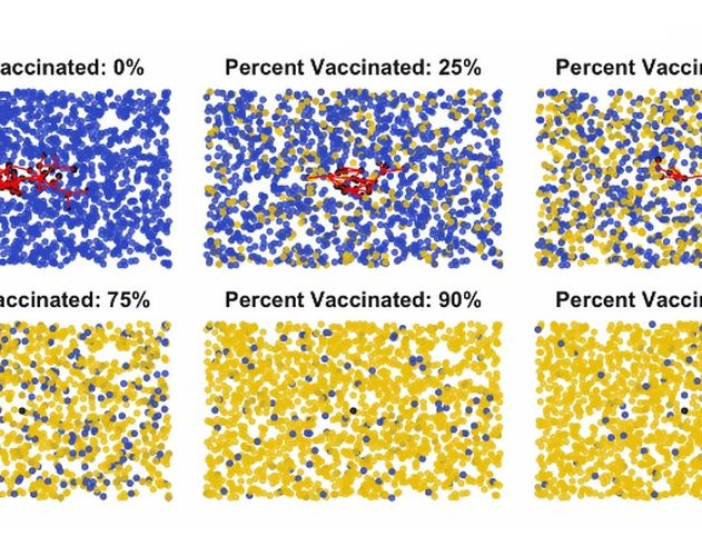 vaccination vaccin immunité gréfaire de communauté