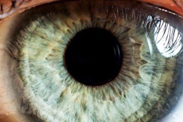 oeil bionique rétine endomagée implant