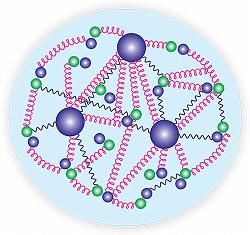 intérieur proton structure