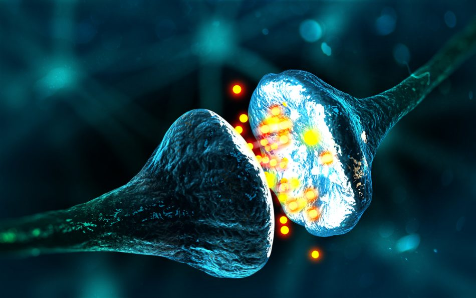 réseau neuronal neurone synapse connexion tube nanotube carbone