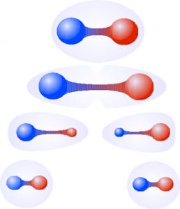 illustration formation tube de flux