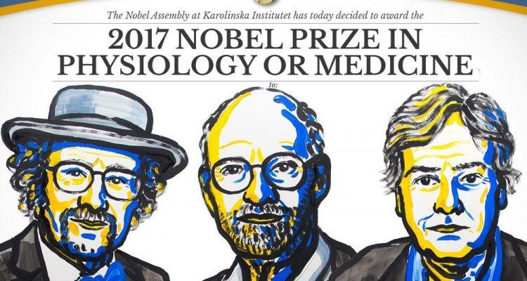 prix nobel medecine 2017 americain horloge biologique