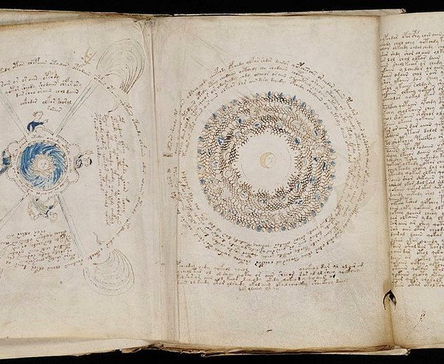 manuscrit voynich plantes déchiffrement intelligence artificielle IA