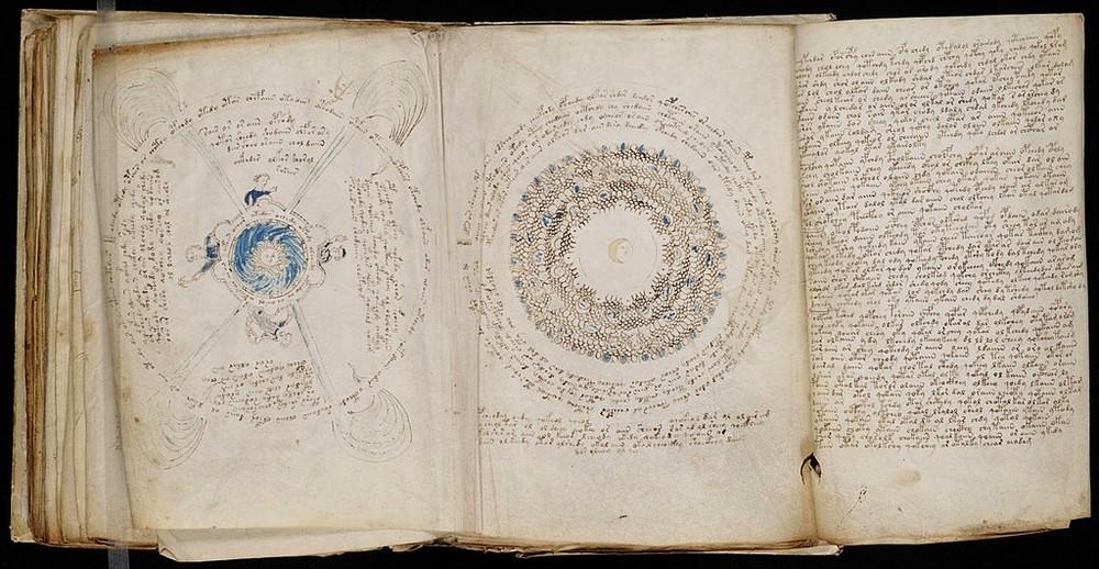 manuscrit voynich plantes déchiffrement intelligence artificielle IA