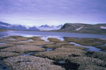 permafrost pergélisol fonte glace glaciers environnement planète réchauffement climat
