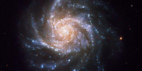 ngc 1376 galaxie spirale