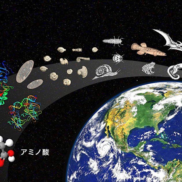 origine vie proteine