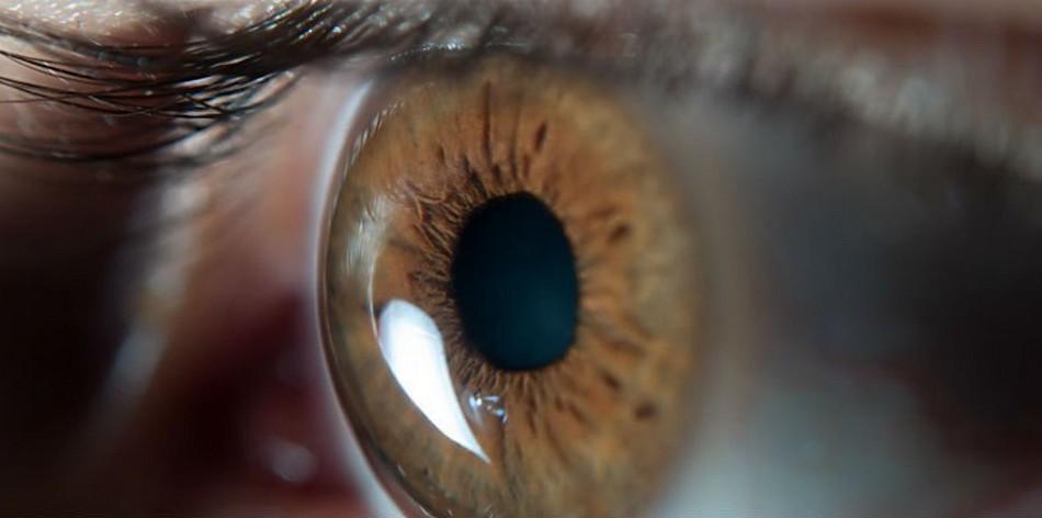 yeux oeil degenerescence maculaire traitement