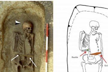 squelette couteau
