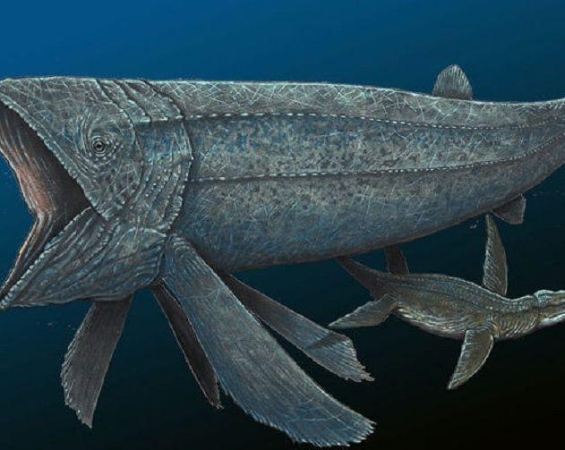 poisson prehistorique