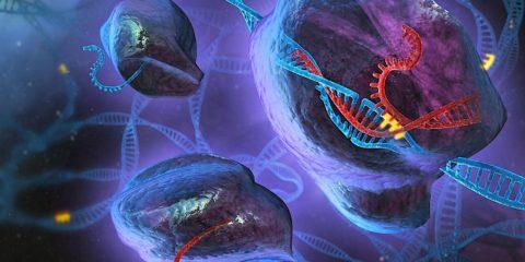 CRISPR adn edition genetique