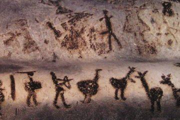 cave art homme neolithique chromosome y