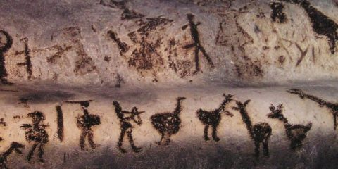 cave art homme neolithique chromosome y