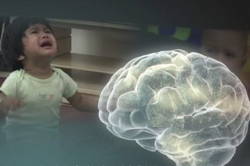 enfant cerveau