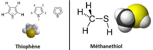 molecule organique