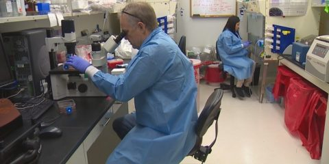 labo virus VIH vaccin