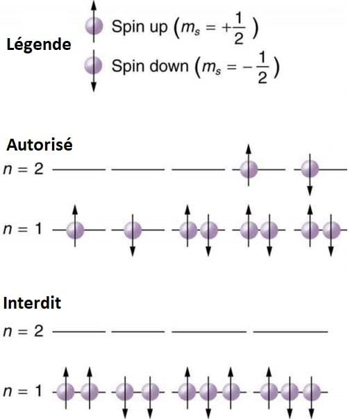 principe exclusion pauli fermions