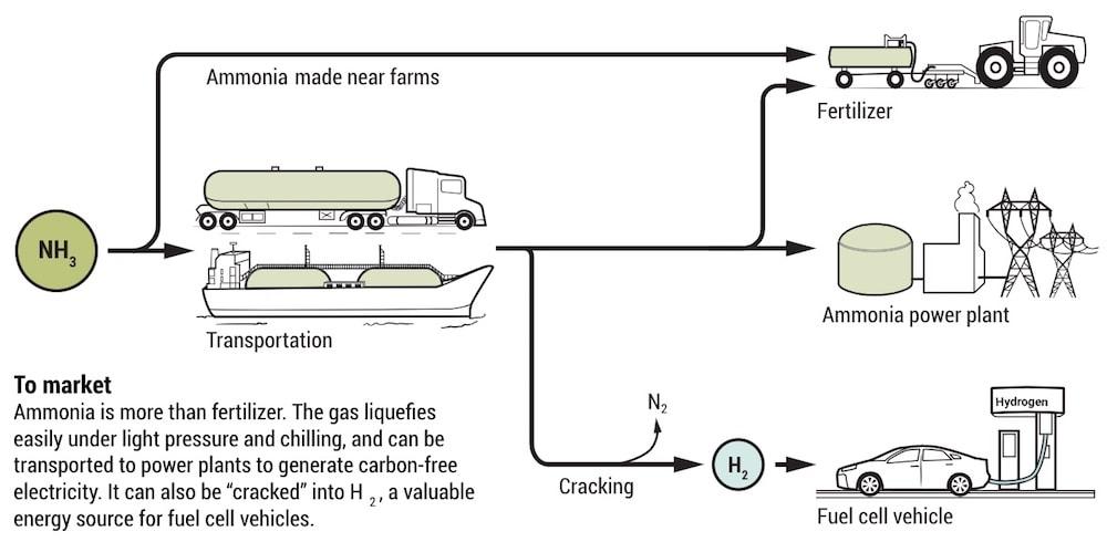 transport ammoniac hydrogene