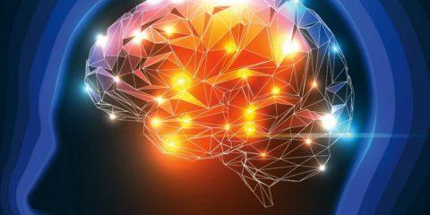 cerveau memoire apprentissage apprendre souvenir technique
