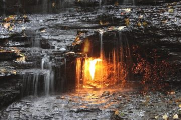 chestnut ridge flamme eternelle