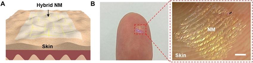 nanomembrane doigt musique peau