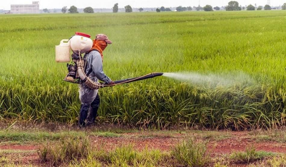 pesticide poison autisme tsa