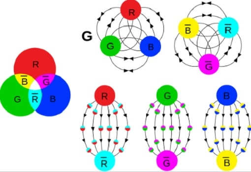 quarks confinement couleur