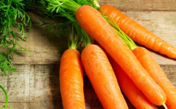 carotte moderne