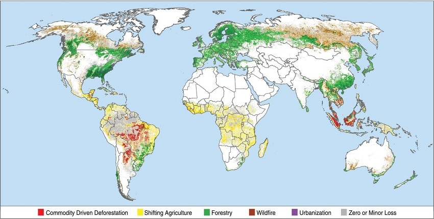 carte zones causes deforestations