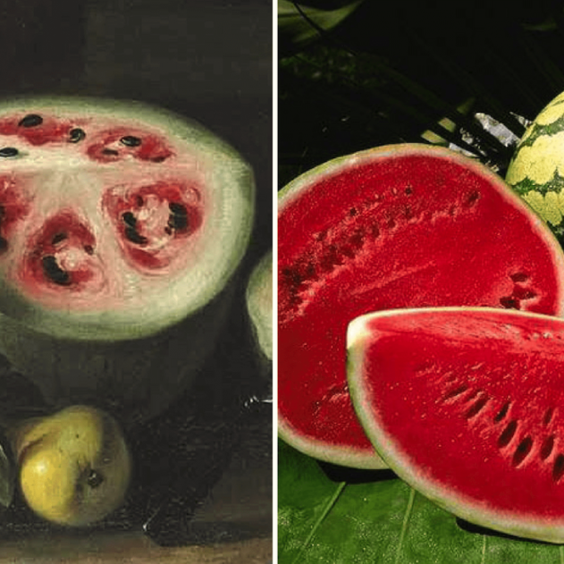 fruits ancetres domestication