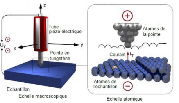 microscope effet tunnel electrons
