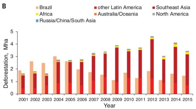 graphique evolution taux deforestation