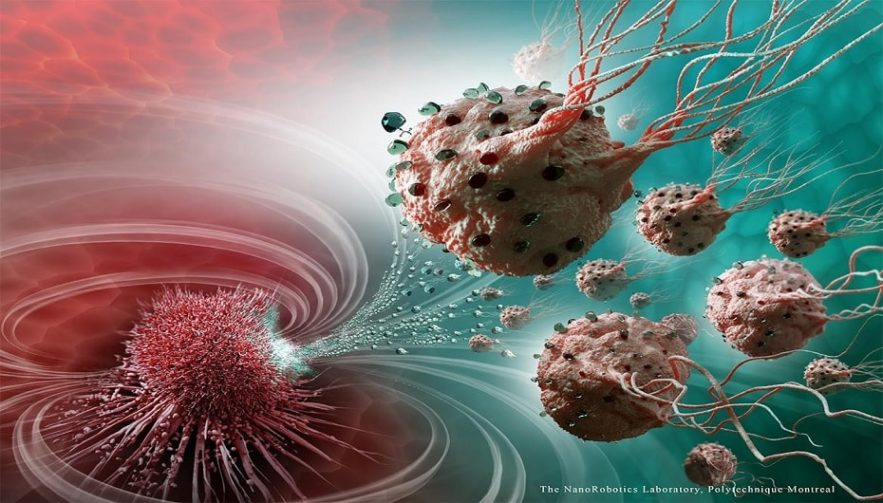 injections bacteriennes tumeurs cancer