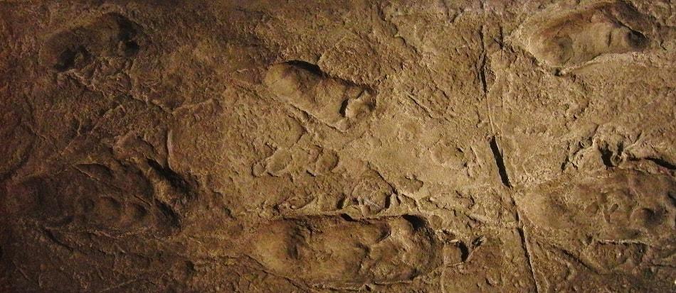 Laetoli empreintes techniques de datation rebond datant après rupture