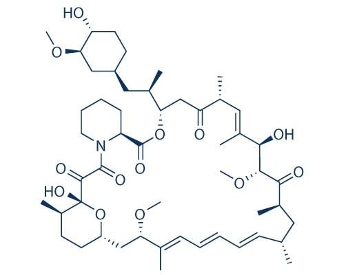 sirolimus rapamycine molecule