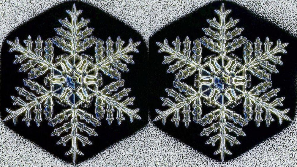 flocons neige identiques