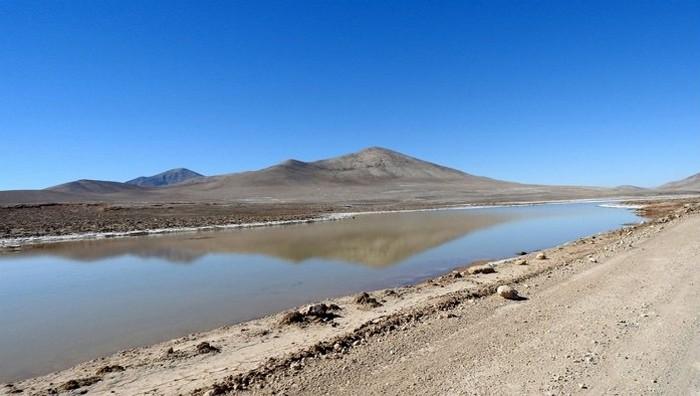 pluie oasis eau desert atacama mort cellule microbe microbiote environnement aride hyperaride