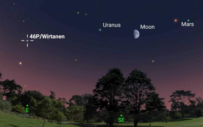 comete 46p observer ciel nocturne etoile