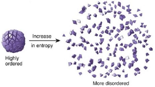 entropie complexite trou noir