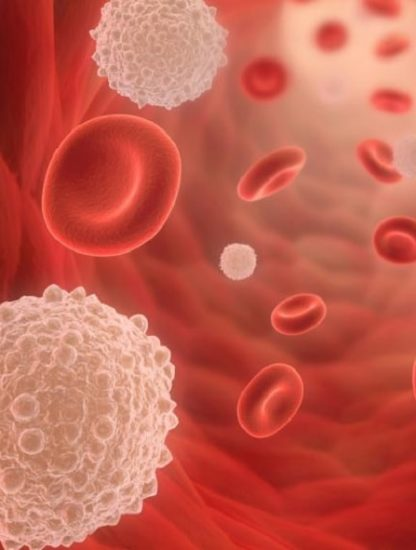 intestin cellules sanguines