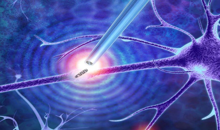 pinces nanometriques cellules