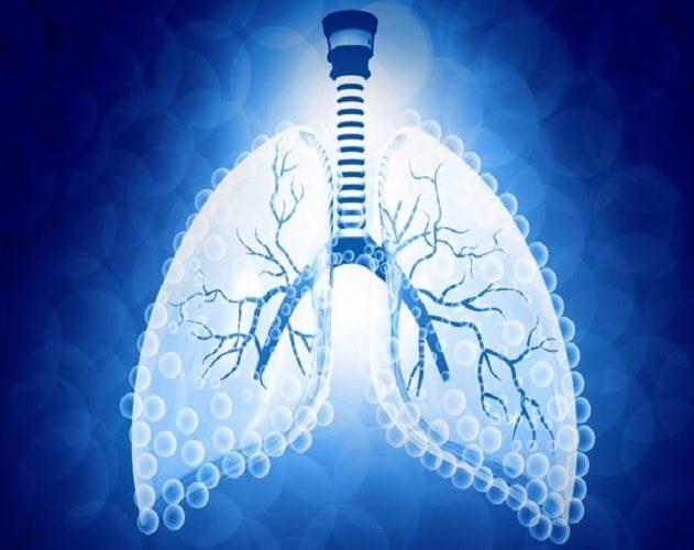 poumon energie eau