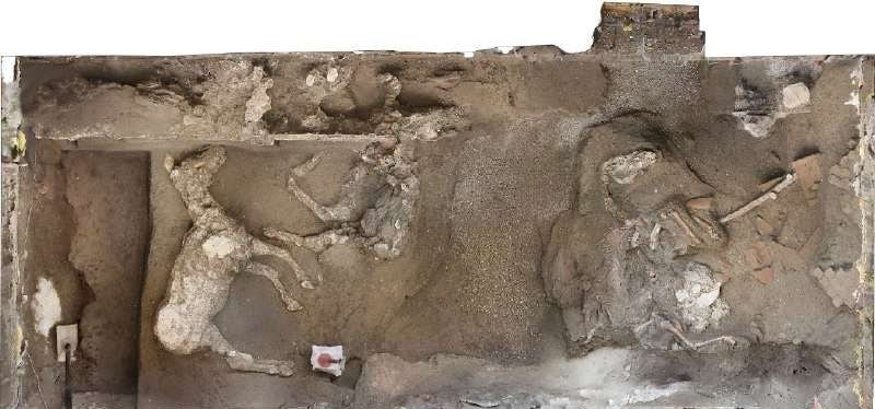 site chevaux pompei